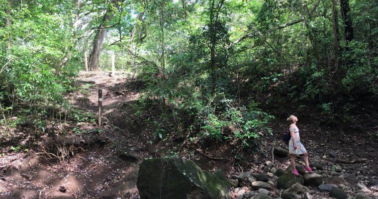 Mietteitä Keski-Amerikan maista, reiteistä ja strategiasta